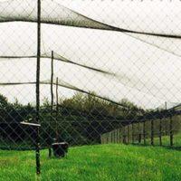 Filet à poser sur un enclos pour protéger ses poules