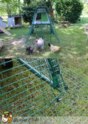Système anti-renards