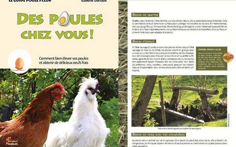 Livre Des poules chez vous - Isabelle Goriaux