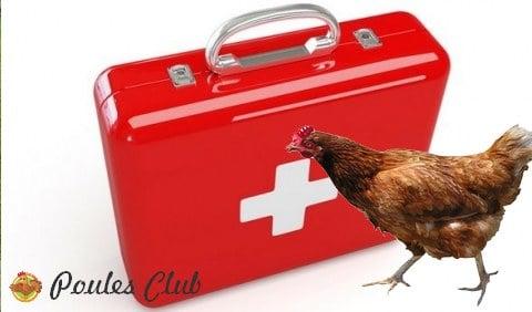 trousse-secours-poules