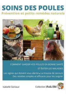 Comment prendre soin de ses poules