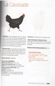 poule-caussade