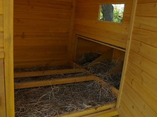 Grand poulailler pour 10 12 poules for Interieur poulailler