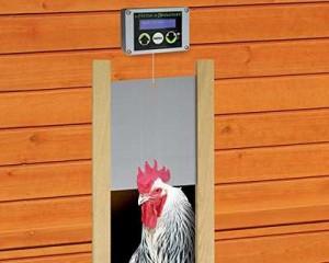 Faut il absolument fermer le poulailler le soir - Ouverture automatique porte de poulailler ...