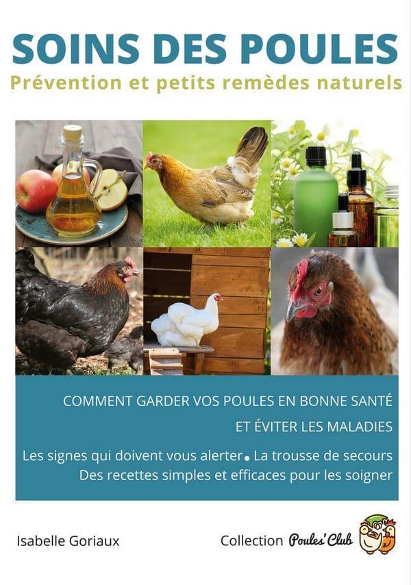 soins des poules comment les garder en bonne sant ForTraitement Pour Les Poules