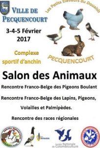 Exposition volailles février 2017