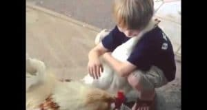 Câlin entre un enfant et une poule