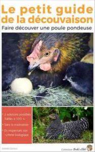Un guide pour aider vos poules à stopper leur couvaison