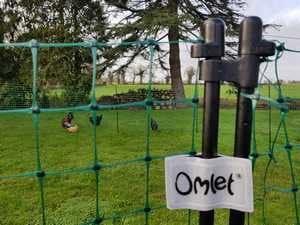 Porte du filet Omlet