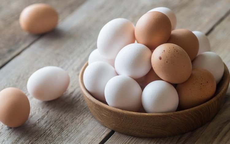 Coquille d'œuf et problèmes