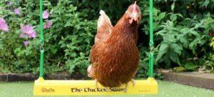 Voici un perchoir pour poules original