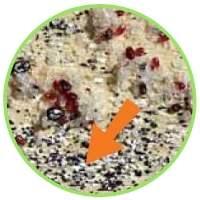 Traces de poux rouges ressemblant à du poivre et du sel