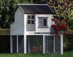 Un beau poulailler dont l'enclos devrait être ouvert sur l'extérieur