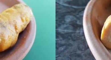 Tout savoir sur la salpingite chez la poule