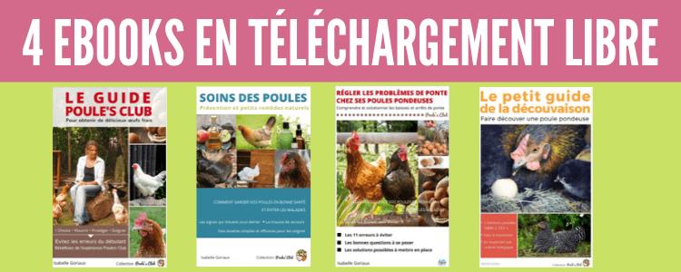 4 Ebooks pour vous aider à élever vos poules en téléchargement libre