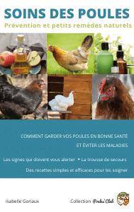Un guide pour vous aider à prendre soin de vos poules