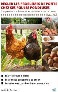 Comment régler les problèmes de ponte chez ses poules pondeuses