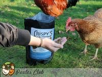 Attirer une poule avec des friandises