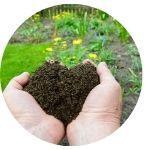Compost de litière permanente
