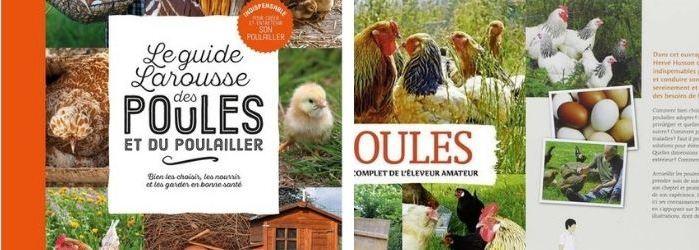 Sélection livres sur les poules
